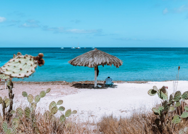 Aruba Staycation